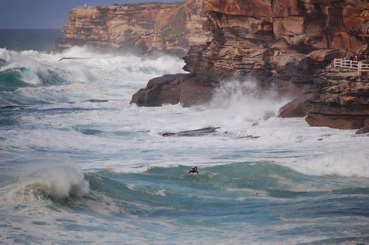 Surf-crop